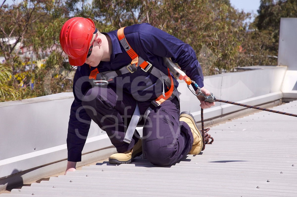 Harness Equipment Correct Safety